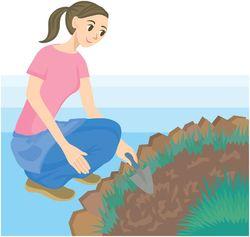土が付いたケガにはご注意ください。