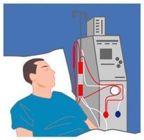 透析患者さんの長期予後もずいぶん良くなりました。心臓や血管を守ることがキーとなります。